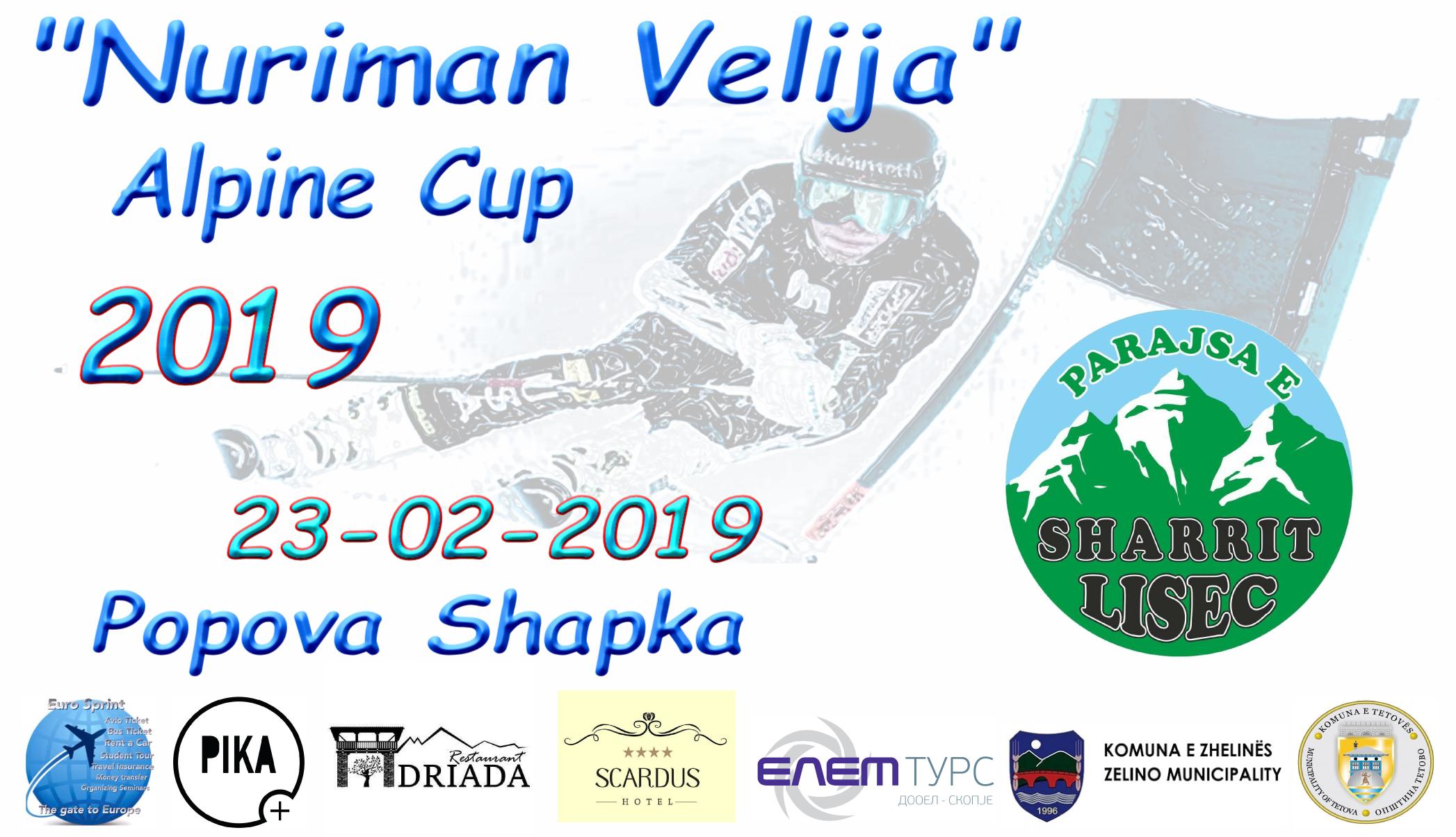 Alpine Ski Cup